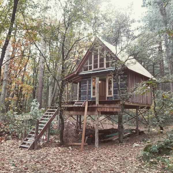 petite maison dans les arbres